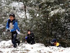 「雪合戦」 センターフィルド 様(2012年2月)