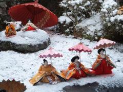 「東の谷のひなまつり」 なごり雪 様(2012年2月)