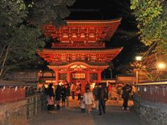 「元旦初詣の薦神社」 写坊 様(2012年12月)