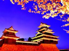 「中津城さくらのころ」 neboke 様(2013年2月)