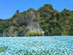 「青の洞門」 ミスター 様(2013年4月)