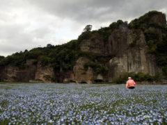 「青の洞門のブルー」 ワンチコ 様(2013年4月)