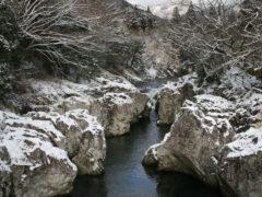 「さるとびの冬」 ワンチコ 様(2013年12月)