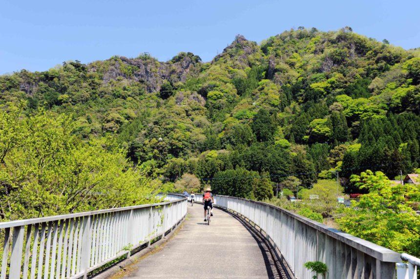 サイクリングロード(初夏)