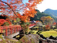 溪石園(秋)