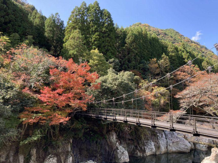 猿飛千壺峡(秋)